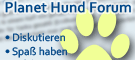 Planet Hund Hundeforum